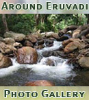 Nice photos of places around Eruvadi